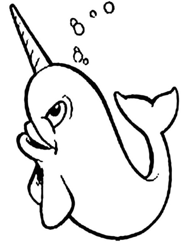 Narwhal Coloring Page Coloring Pages Whale Coloring Pages Narwhal