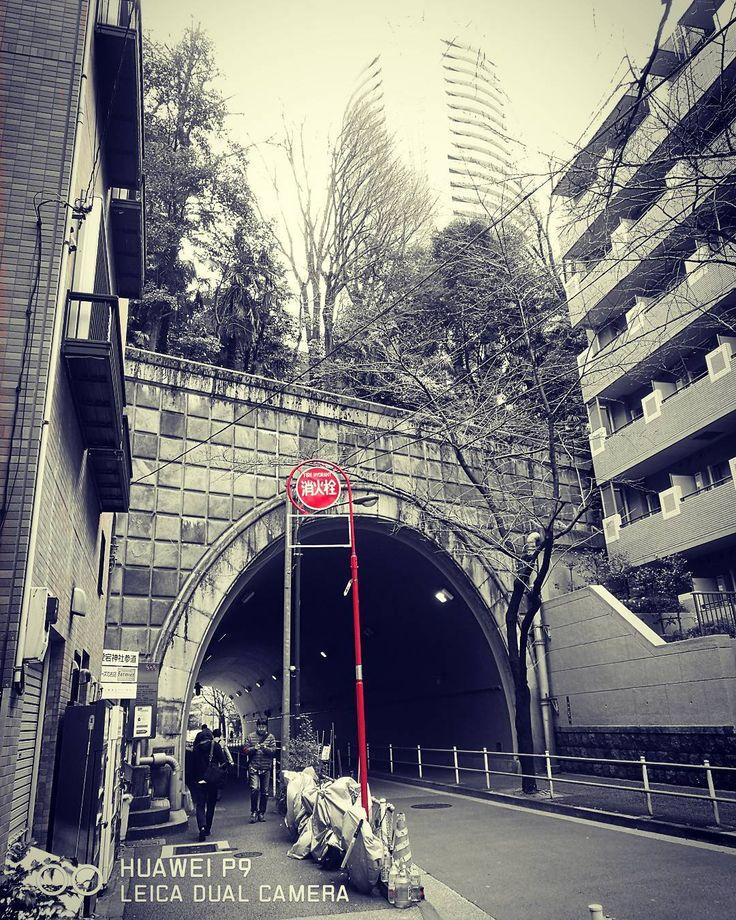 "23 Me gusta, 1 comentarios - @igaykck en Instagram: "". トンネルの上は愛宕神社です。 夜はちょっと怖そうですねぇ。 . #huaweip9 #huawei #Leica #愛宕山トンネル #愛宕山 #愛宕隧道 #虎ノ門#モノクロ #Japan…"""