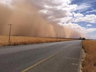dROUGHT - dust storm 2015/2016 Droogte en stofstorms | RSGplus