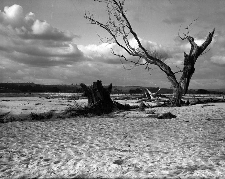1950 Marlo Road at Gilberts Gulch  - flood damage.VicRoads Centenary 1913-2013. www.vicroads.vic.gov.au/centenary