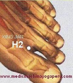 Su nombre es XING JIAN que significa INTERVALO ACTIVO. Los textos antiguos lo mencionan como el punto indicado para tratar la mayoría de enfermedades emocionales, indicado para la psicosis, tristeza, miedo, pánico, cólera, insomnio, hipertensión, regula el flujo menstrual. Hágase masaje con el dedo índice o pulgar en el punto H2, de los dos pies por dos minutos, tres veces al día; resultará muy beneficioso y relajante