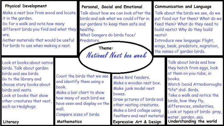 EYFS planning for National Nestbox week