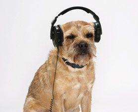 listen to music 3