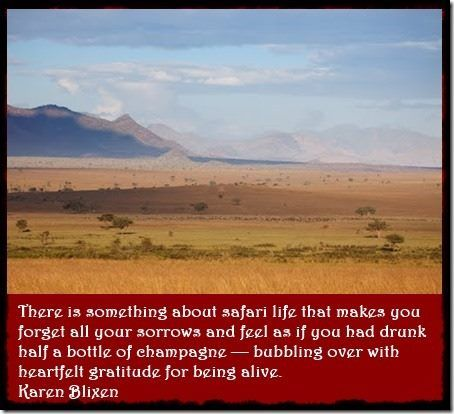 """There is something about safari life"" by Karen Blixen - Out of Africa #travel #quote www.pridelodges.com"