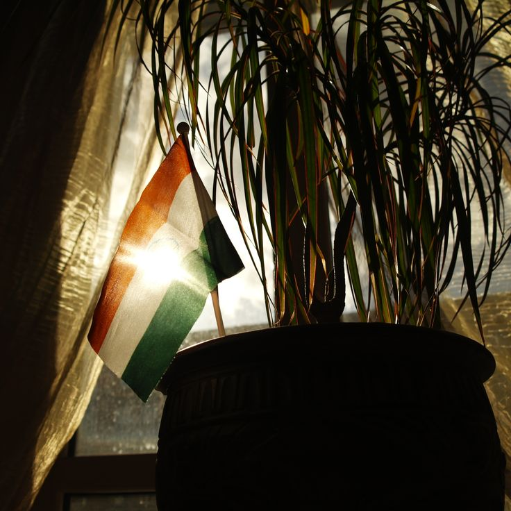 Indian Flag in the sunlight