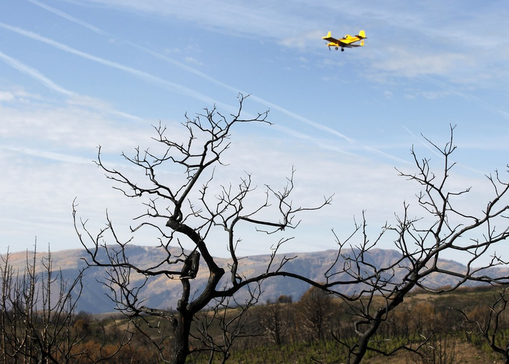 Native and non-native seed mixture is spread by plane across  burned areas during this Summer's  Wood Hollow Fire near Mount Pleasant.  The seeds will help with erosion problems and provide food for wildlife as the ground heals. (Al Hartmann     The Salt Lake Tribune)