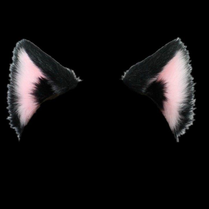 Catboy Ears Imagens Para Photoshop Imagem De Fundo Para Iphone Orelha