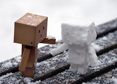 snow danbo