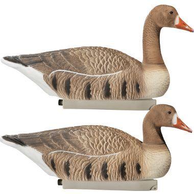 Cabela's Northern Flight™ RealImage® Specklebelly Goose Floaters : Cabela's