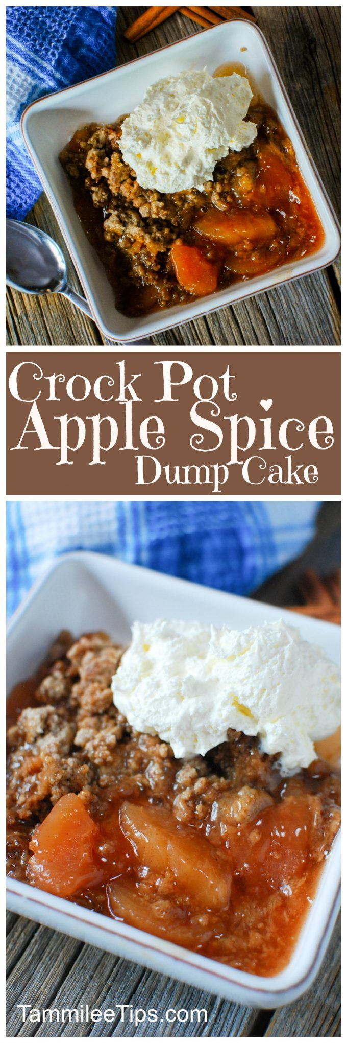 307 best recipes images on pinterest recipes crock pot for Easy apple dessert recipes with few ingredients