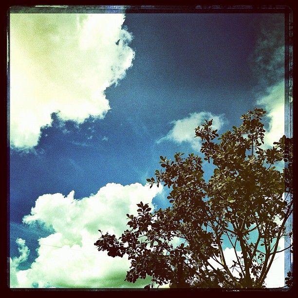 ศุกร์ สด ใส #webstagram #thaistagram #sky #statigram #instagood #instagram #instamood #iphonesia #instaaaaah #i#adayinthailand #photo #pixoftheday #photooftheday #thebestshooter - @hanibahmonkey- #webstagram
