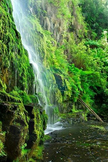 Erskine Falls, Aystralia