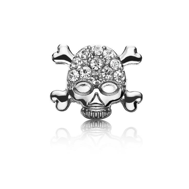 Pirate Skull Dog Charm