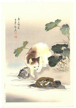 無款: Cat and frog - Japanese