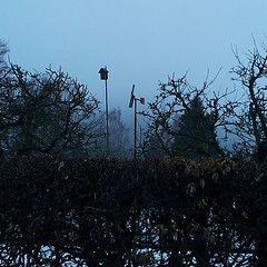 windrad garten vogelhaus hecke starenkasten