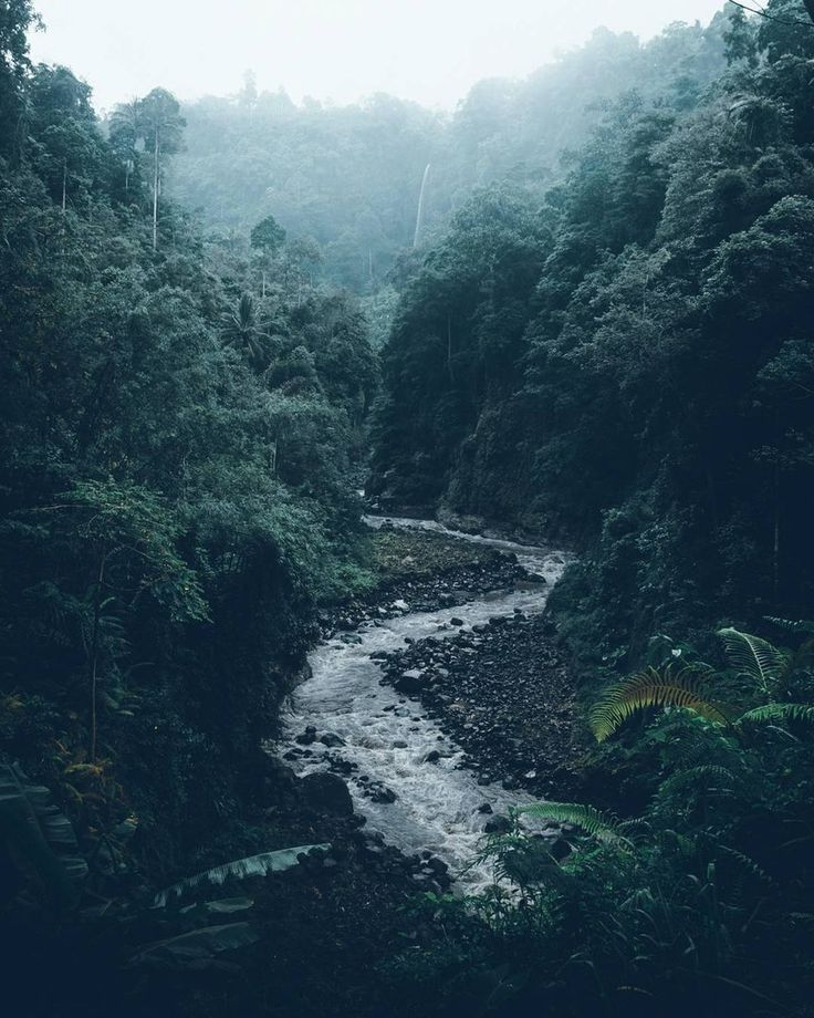 A River Runs Through It Camping River Mountains Nature Nature Photography Landscape Photography Beautiful Nature