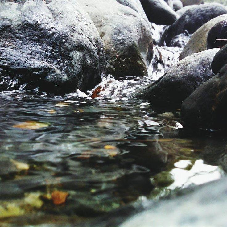 Agua Rio pance