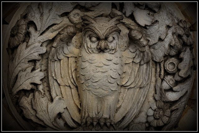 Owl detail at Bryn Mawr College. Photo by sfPhotocraft