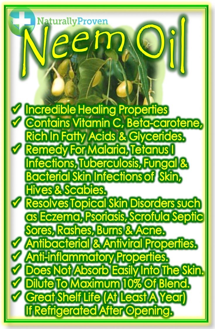 Neem Oil -has Incredible healing properties, contains Vitamin C, Beta-Carotene,Rich in Fatty Acids & Glycerides. Used as a remedy for malaria, tetanus infections, tuberculosis, jaundice, malaria, ringworm, lice, fungal & infections of skin, hives & scabies. Resolves topical skin disorders -rosacea, skin redness, eczema, psoriasis, scrofula septic sores, rashes, burns & acne.  #carrieroil #neemoil #skincare #wound #acne http://www.naturallyproven.com/neem-oil-carrier-oil-for-essential-oils/