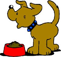 Dog Eating Images, Graphics, Comments and Pictures