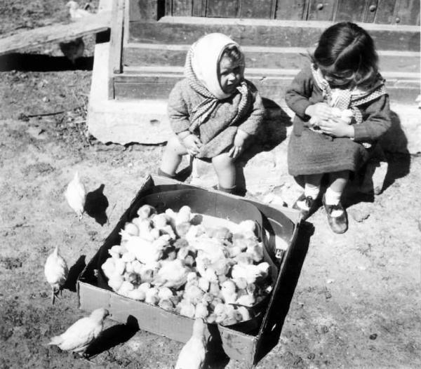 Scena di genere - Bambine con pulcini  (Ernesto Fazioli 1925)