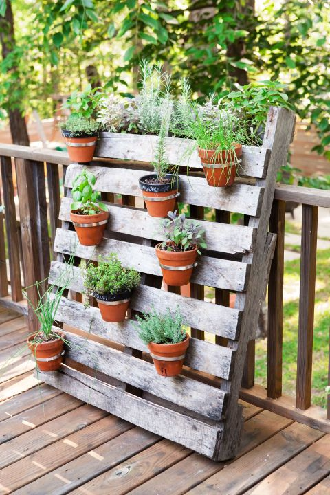 For this rustic arrangement, Clark screwed hardware-store hose clamps onto a freebie wood pallet, added pots and herbs, and leaned it against the deck railing. Total cost (minus the dirt plants): $40.
