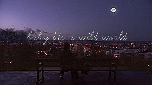 Wild, Cat Steven, Life, Quotes, Baby Baby, Songs Hye-Kyo, Skin Uk, Things, Catsteven