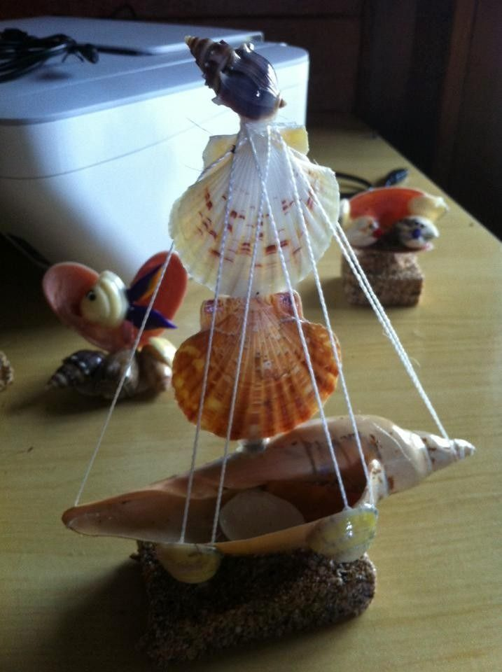 artesanatos de conchas do mar de penha sc