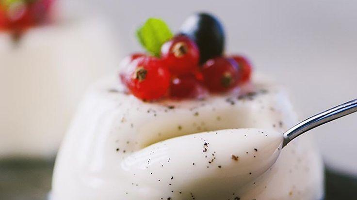 Alternative colla pesce e gelatina