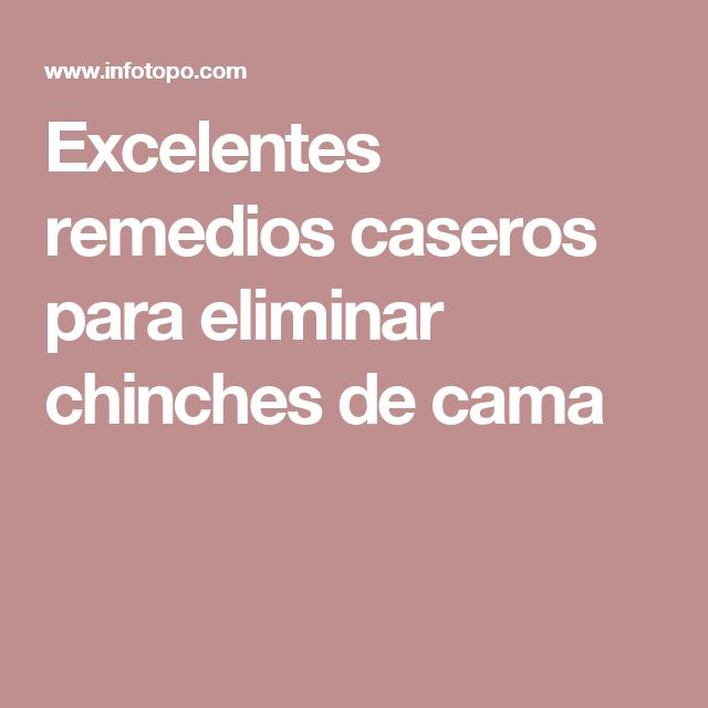 25 best ideas about como eliminar chinches on pinterest for Como eliminar chinches de cama