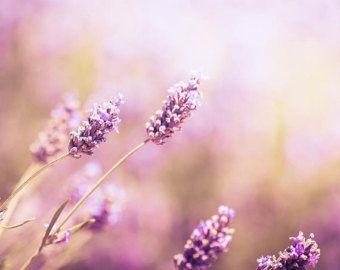 Botanische print bloemsierkunst kwekerij decor door mylittlepixels