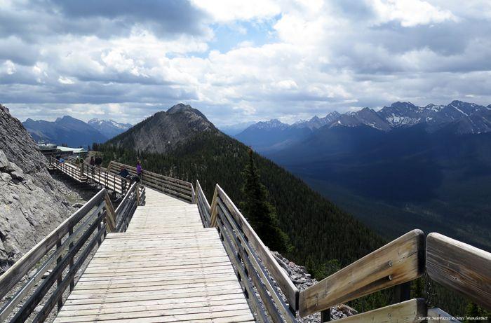 Take a ride to the top of Sulphur Mountain on the Banff Gondola, and then take a short walk on Sansons Walkway for even more epic views.   #explorealberta #mybanff #explorerockies  @TravelAlberta @banfflakelouise @explorerockies