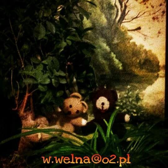 Bear cubs sensed spring   http://welna.blog.onet.pl w.welna@o2.pl