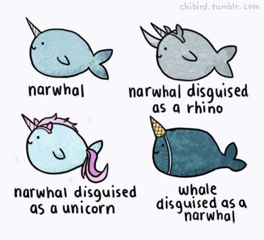 Narwhal disguised