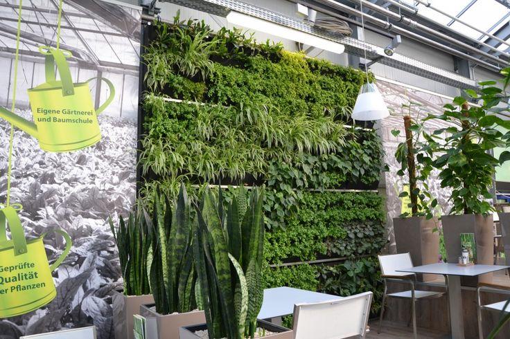Oasen Paneel mur végétal intérieur vertiss vertiss mur végétal