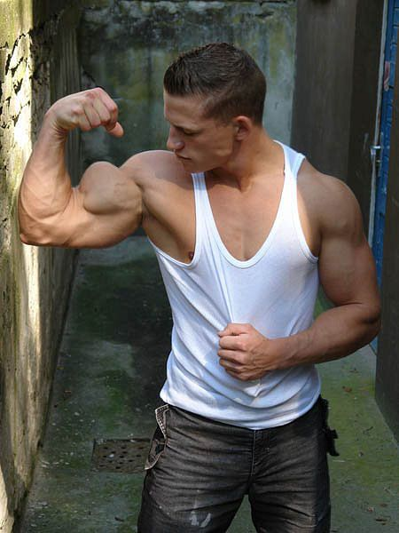 17 Best images about arms on Pinterest | Bodybuilder ...