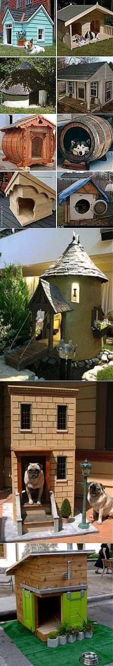 Необычная будка для собаки - сделать просто