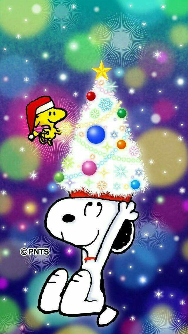 SNOOPY & WOODSTOCK~CHRISTMAS CHEER