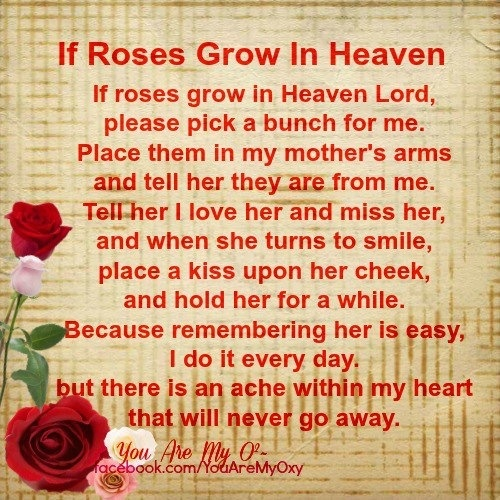 If roses grow in heaven | Quotes and verses | Pinterest ...