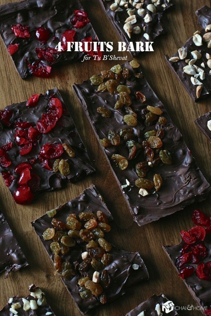 A great way to use leftover Hanukkah Gelt: Tu B'Shevat Craft: 4 Fruits Bark   Chai and Home