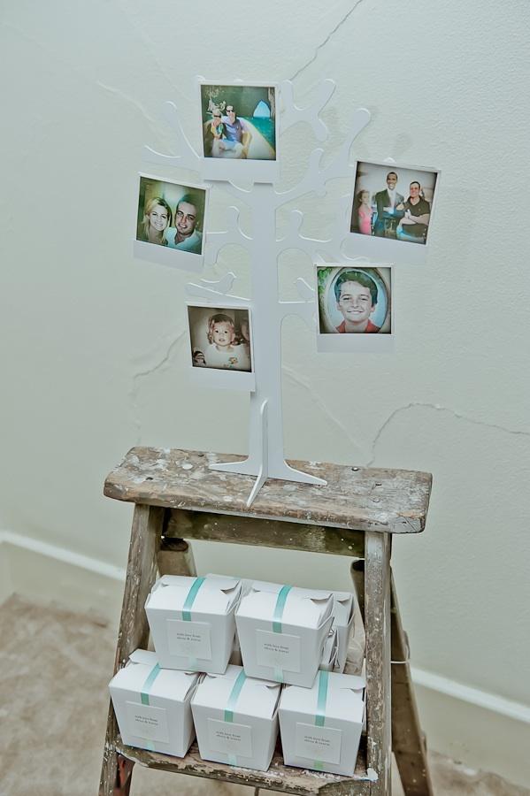 Polaroid tree - vintage photos created of the couple on display