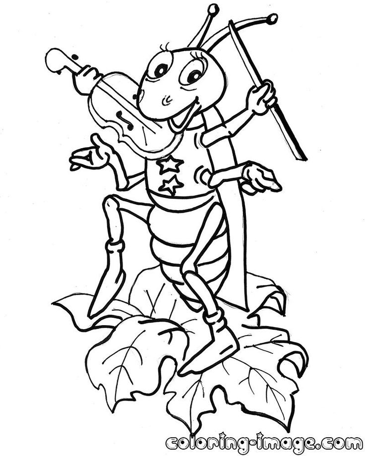 Cricket Playing Violin Cricket Playing Violin Coloring Pages