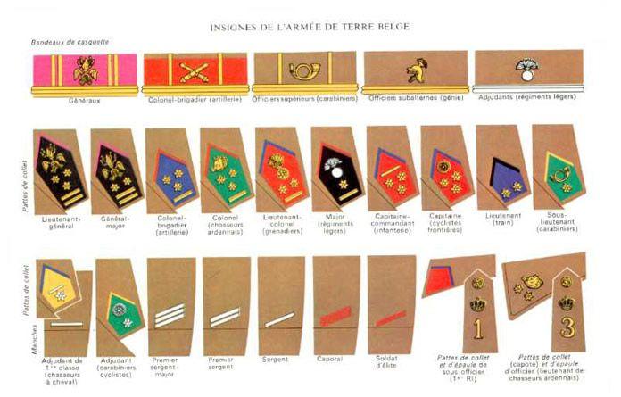 Les insignes de l'armée de terre belge