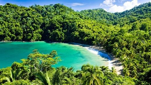 Det er lett å like de idylliske omgivelsene ved Englishman's Bay på Tobago.