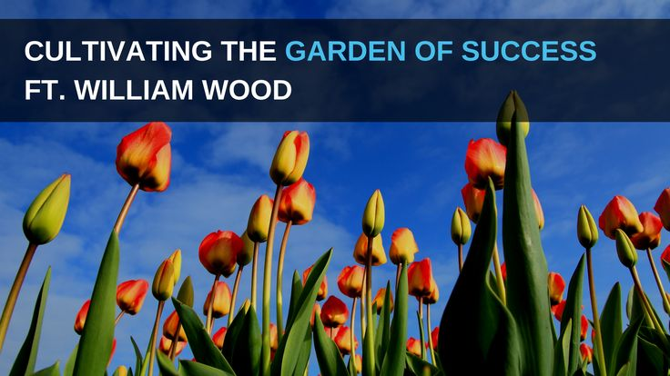 How to Cultivate the Garden of Success (5 Principles You Need to Master)