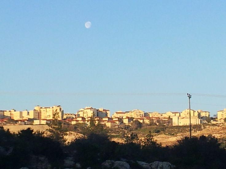 Moon in sunrise. Beit  Shemesh. Feb.2014