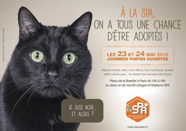 PORTES OUVERTES LES 23 ET 24 MAI 2015 : LA SPA VOUS ATTEND A PARIS OU DANS SES 60 REFUGES ET MAISONS SPA | Société Protectrice des Animaux