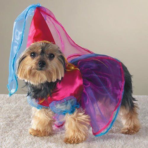 Casual Canine FAIRY PRINCESS Dog Pet Halloween Costume CLEARANCE! #CasualCanine