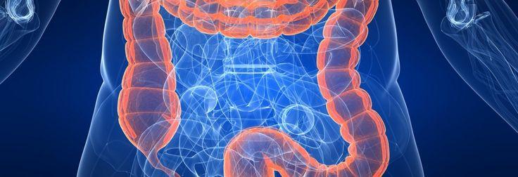 ¿El parkinson se origina en los intestinos?