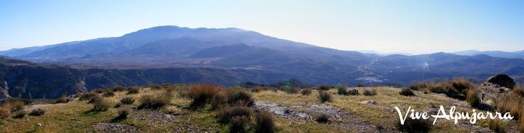 Vista panorámica desde el Castillo de Paterna del Río hacia los viñedos de Laujar y su salida hacia Alcolea. Al fondo, la Sierra de Gádor . Vive Alpujarra